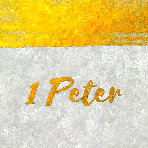 What If? (1 Peter 2:21)